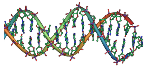 dna_double_helix_horizontal
